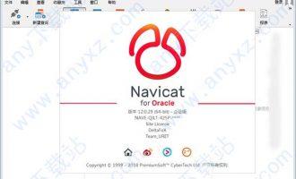 navicat 12 for oracle中文破解版|navicat for oracle 12中文破解版下载 64位/32位企业版