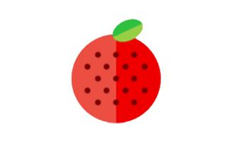 草莓播放器破解版下载 v1.0.0安卓版